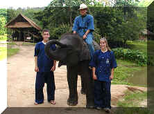 Elephant and Mahout Trainees