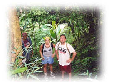 Trekking in the jungle